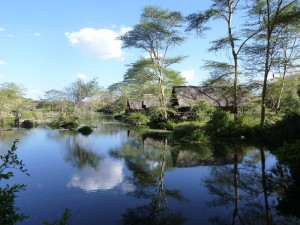 Parco nazionale Tsavo